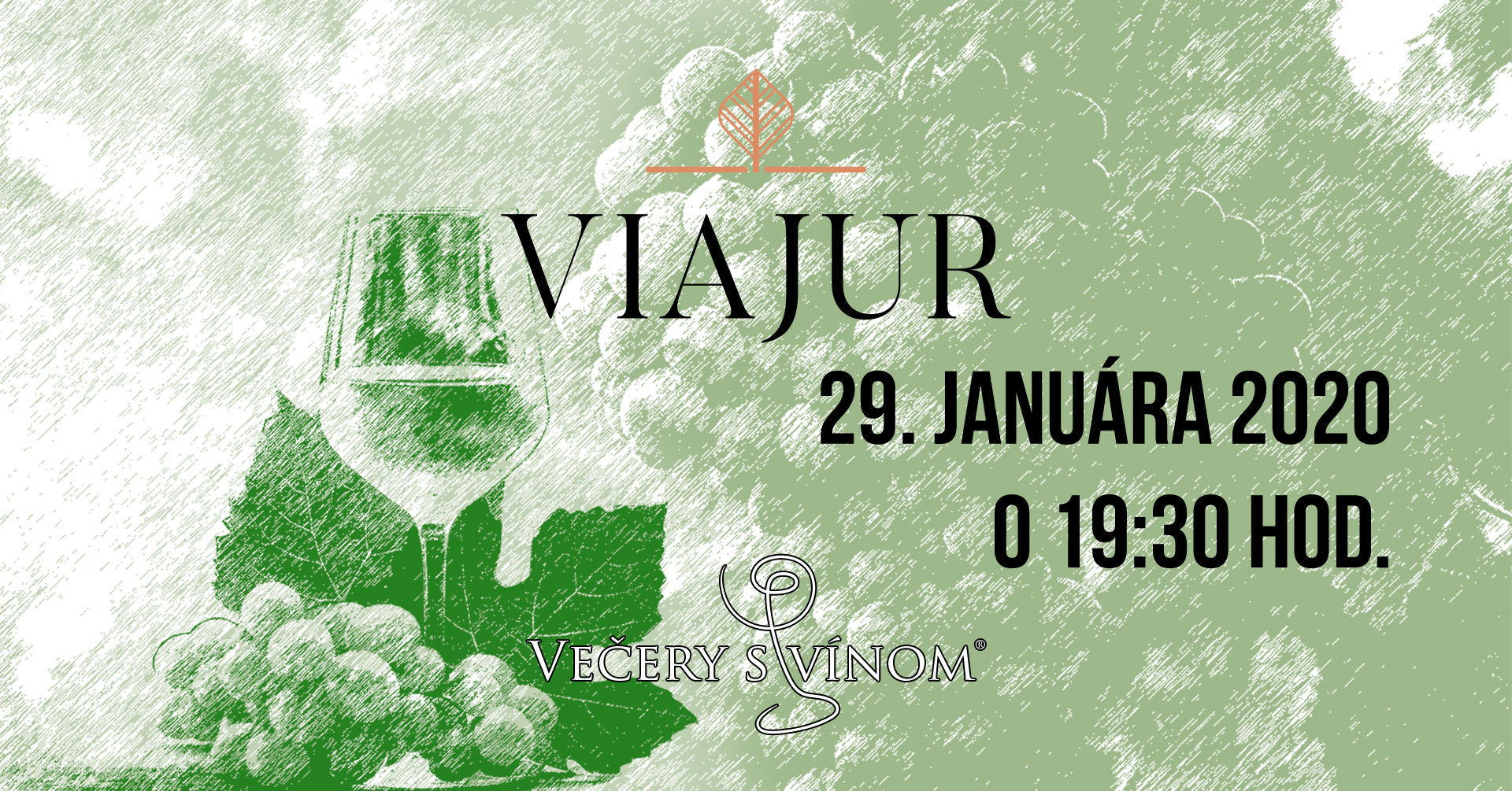 VsvXX-20200129-ViaJurFB